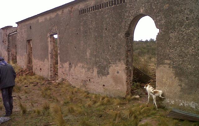 FOTO: El Castillo El Carrizal aparece en medio de los matorrales.