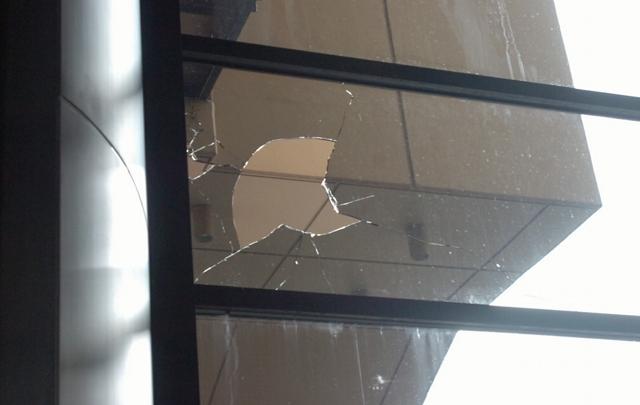 FOTO: Al menos una docena de vidrios resultaron dañados.