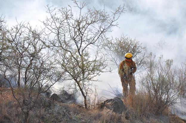 Los incendios ya fueron controlados (Foto: archivo)