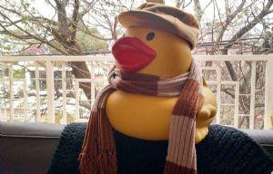 La campaña del Pato Solidario suma adeptos día a día.
