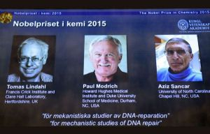 Los tres científicos reconocidos por la Real Academia Sueca de las Ciencias.