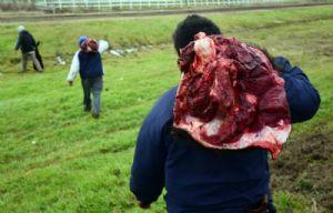 Algunos se llevaron trozos al hombro (Foto: Gentileza El Ciudadano- Juan J. García)