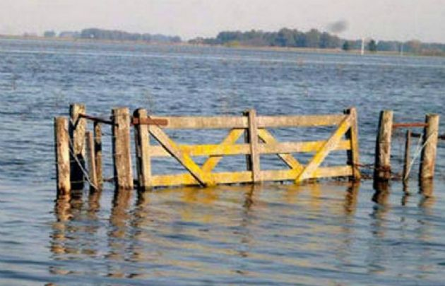FOTO: Miles de hectáreas son lagunas permanentes, que destruyen la producción en la región.