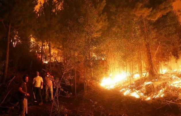 El fuego se mantiene en Chile tras 15 días de incendios.