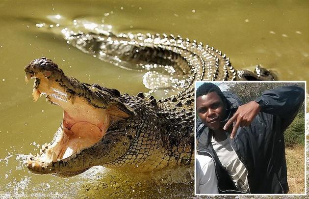 El jugador quiso bañarse en el río cuando el animal lo atacó.