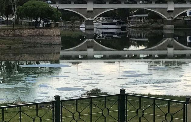 El lago San Roque en el centro de las críticas por las algas nauseabundas.