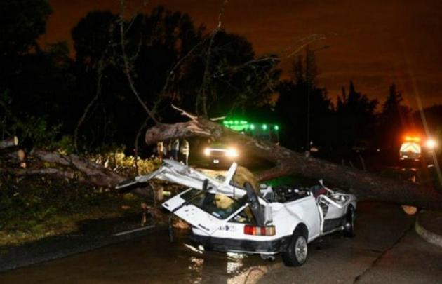 Los daños causados por el temporal en San Martín.