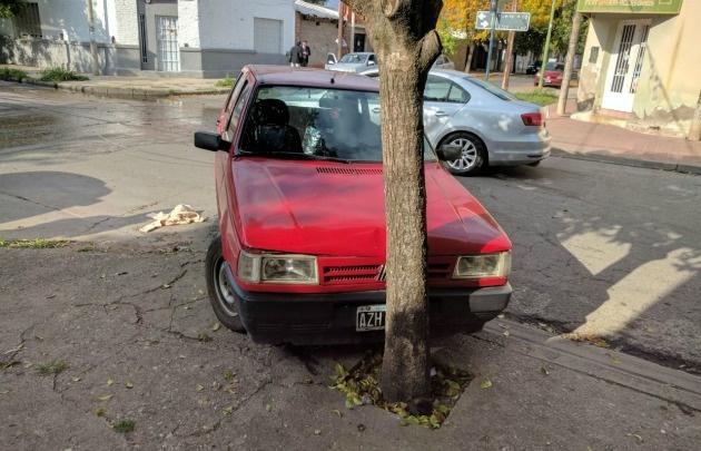 Los autos robados fueron recuperados.