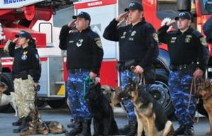 La policía de Córdoba tiene perros entrenados en diferentes búsquedas.