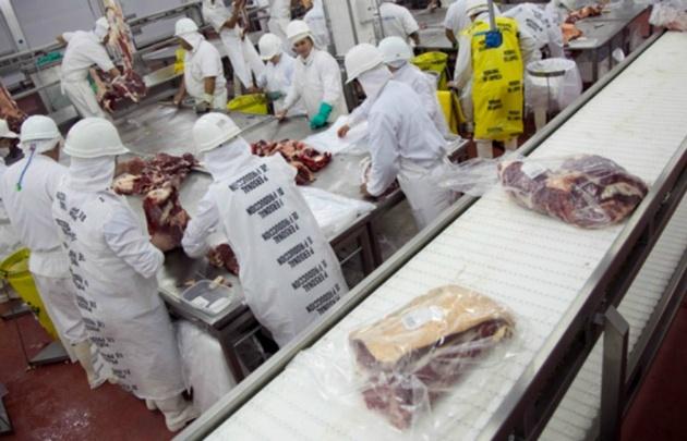 El 40% de la producción argentina va a China (Foto: Archivo)