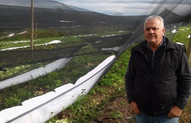 Juan Perlo y los destrozos en el cinturón verde.