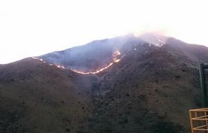 Incendio en Los Cocos.