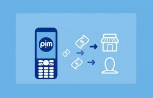 El sistema funciona como una billetera virtual, para no usar efectivo.