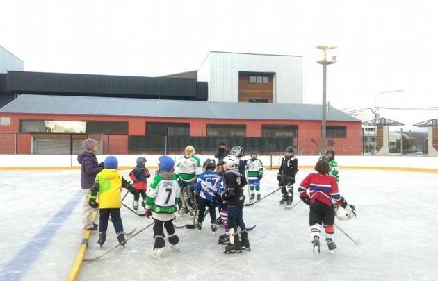 Ligas de hockey para adultos en el sur de california