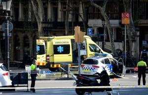 Ya se registraron 14 víctimas fatales tras los ataques en España.