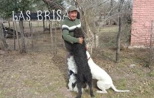 Pedro y sus perros héroes.