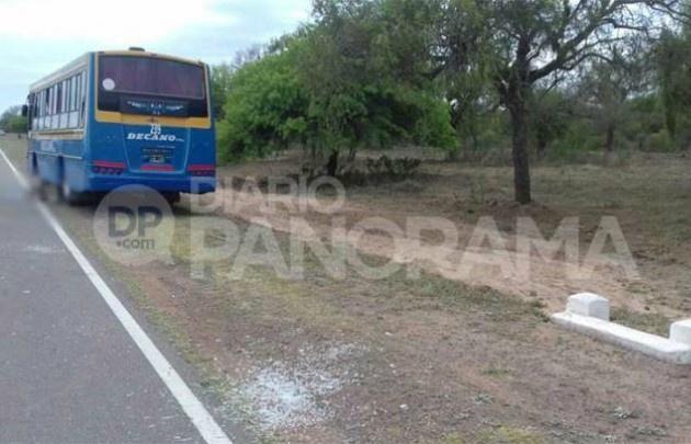 El colectivo arrolló al ex policía en la ruta 64. (foto: Diario Panorama).