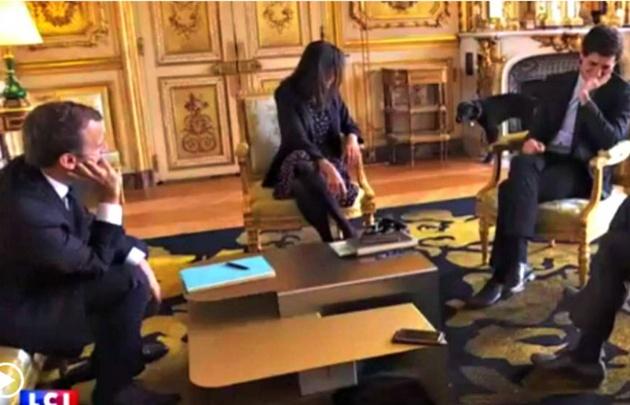 Nemo orina en plena reunión de ministros y Macron.