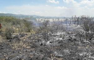 Controlaron el fuego en Guasapampa.
