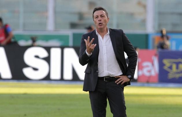 El técnico albiazul lamentó las situaciones de gol desperdiciadas.