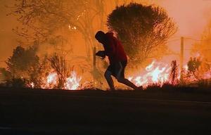 El hombre vio al conejo mientras cruzaba la ruta hacia el fuego.