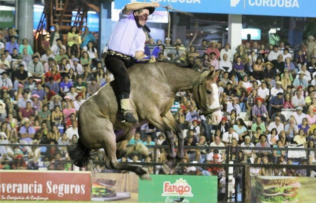 El jinete intenta domar al caballo en la categoría basto con encimera.