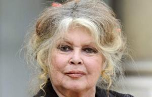 Brigitte Bardot (Foto: Archivo)