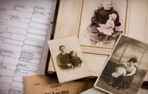 El árbol genealógico recoge 11 generaciones promedios.