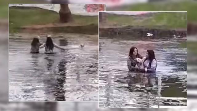 FOTO: Se arrojaron a un lago para salvar a un perro que se ahogaba