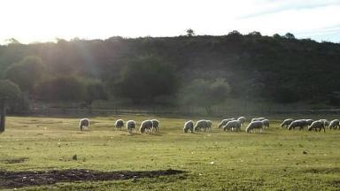 AUDIO: La Trompa del Elefante: un lugar escondido en Punilla