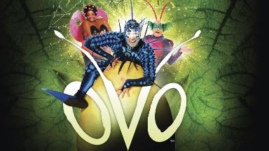 "AUDIO: El Cirque du Soleil regresa a Córdoba con ""Ovo"""