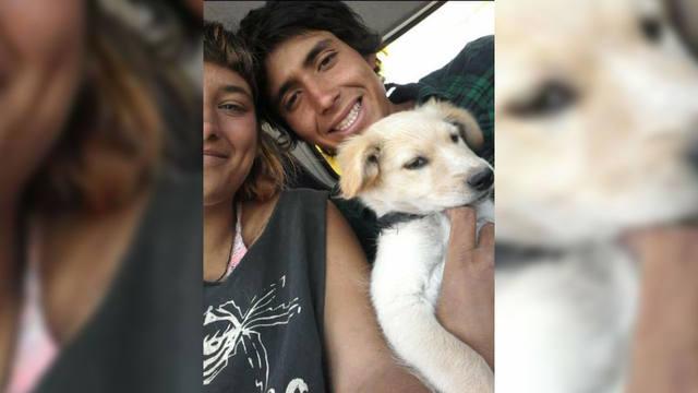 """FOTO: Viajó 1.200 km """"a dedo"""" por amor a sus perros"""