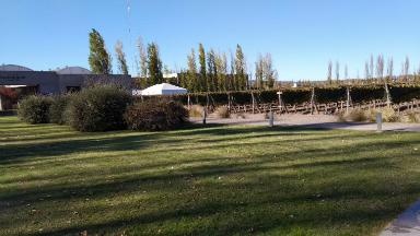 AUDIO: Homenaje a Los Auténticos Decadentes en Mendoza