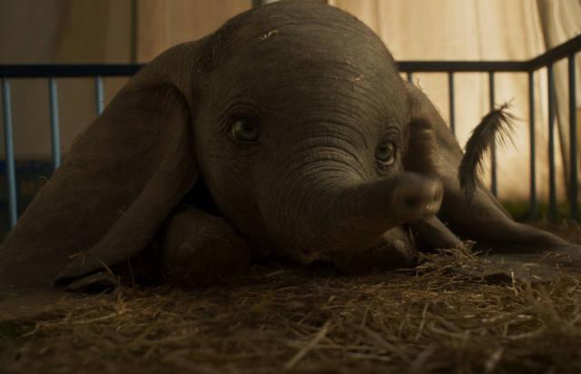 FOTO: Disney revive el clásico Dumbo, con actores de carne y hueso