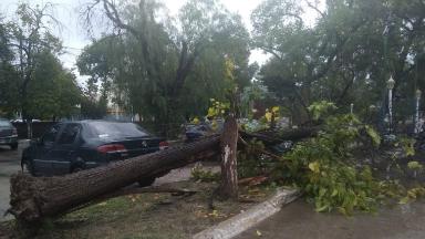 AUDIO: Un fuerte temporal afectó a la capital de La Rioja