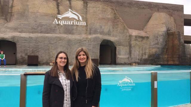 FOTO: Aquarium, la inmensa diversidad marina en un parque natural