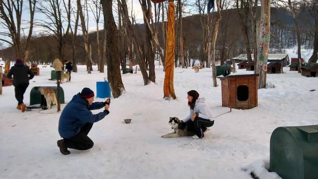 FOTO: Siberianos de Fuego, experiencia en trineo tirado por perros