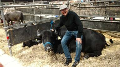 AUDIO: Orlando y un singular momento con la encantadora de búfalos