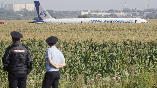 FOTO: Avión ruso con 233 personas aterrizó de panza en un maizal