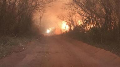 AUDIO: El Chaco paraguayo, también arrasado por el avance del fuego