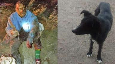 AUDIO: Mi instinto fue defender al perro y él me salvó la vida