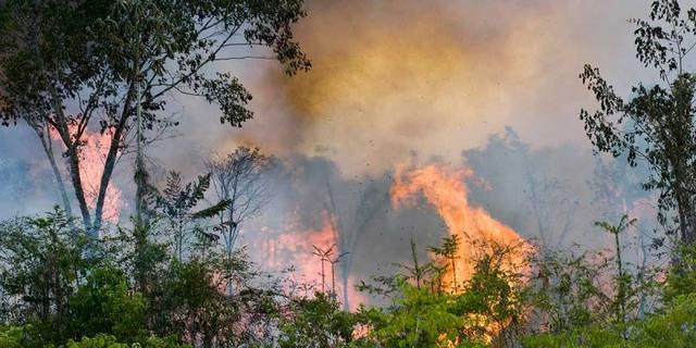 FOTO: Arde la selva amazónica de Brasil: al menos 10 mil focos