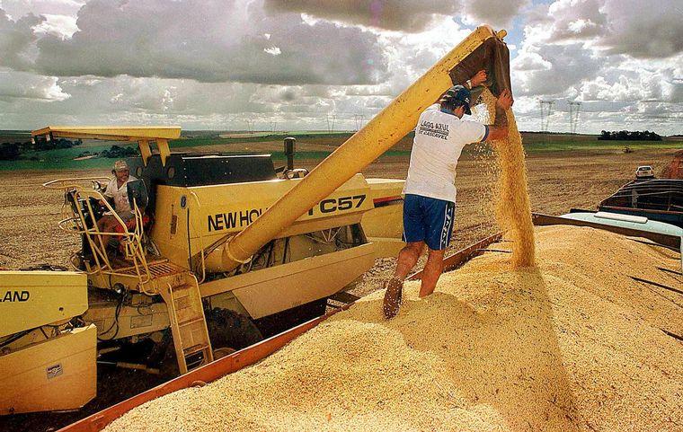 AUDIO: Trabajadores rurales recibirán el