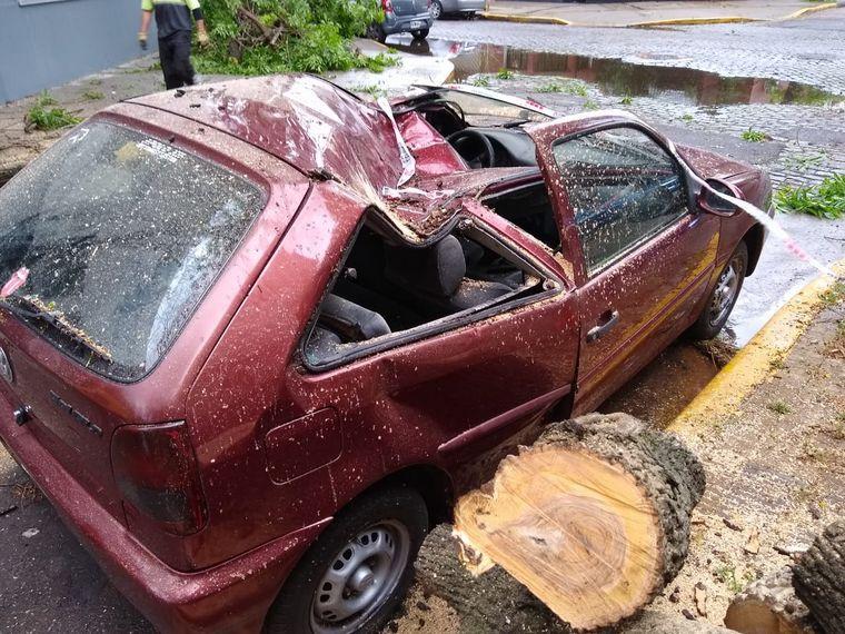FOTO: Un árbol aplastó a un Volkswagen Gol en Parque Chas.