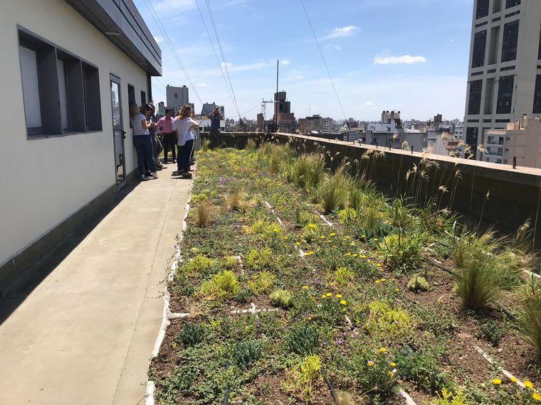 AUDIO: La Municipalidad de Córdoba inaugura su techo verde (por Miguel Clariá)