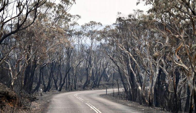 FOTO: El humo cubrió gran parte del país insular.