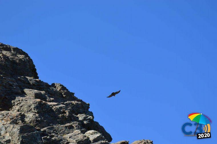 FOTO: Marcela Psonkevich en el Cerro Leones.