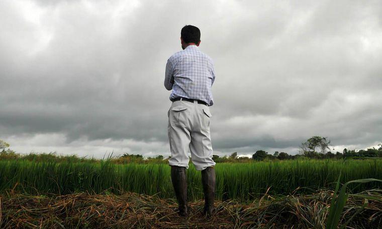 AUDIO: Eduardo Colmegna, productor agropecuario de Totoras.