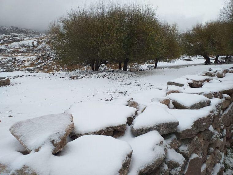 FOTO: Nevó en el Cerro Champaquí.
