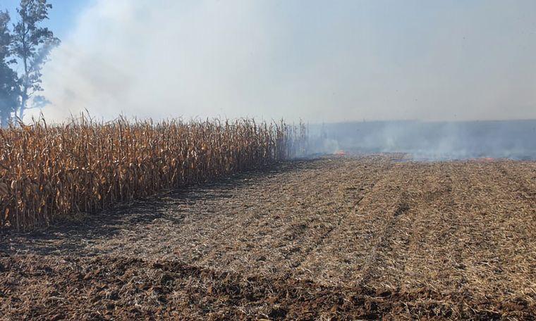 FOTO: Incendiaron en Oliva el campo del vicepresidente de CRA.